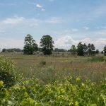 Eaglehurst Estates