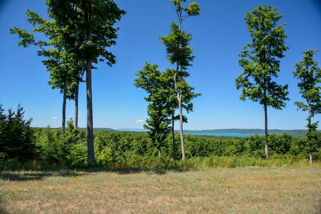 Timber View Ridge Property